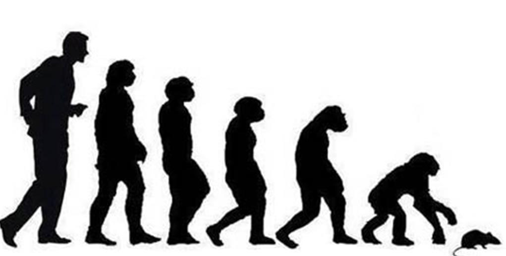 EVOLUCION POLITICOS